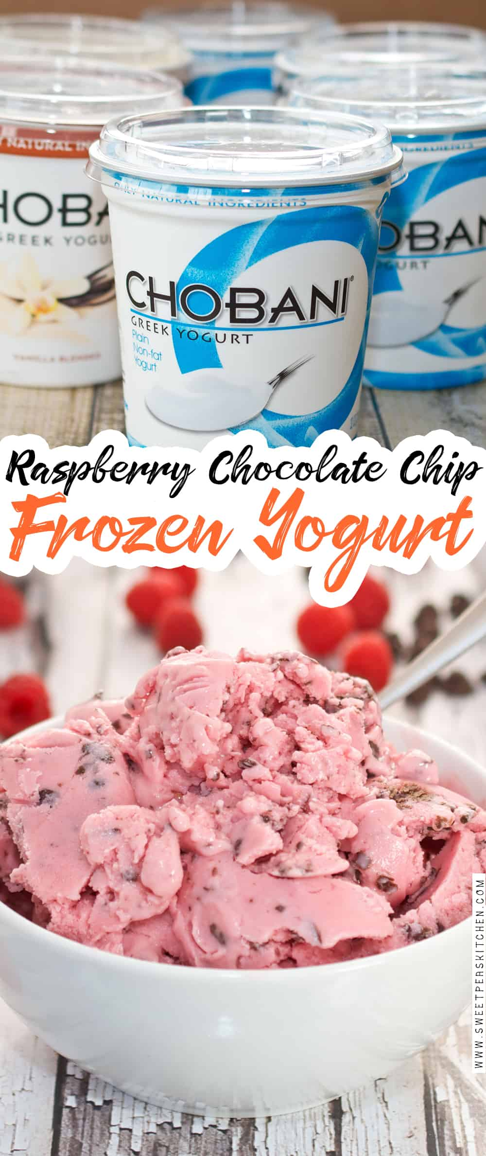 Raspberry Chocolate Chip Frozen Yogurt