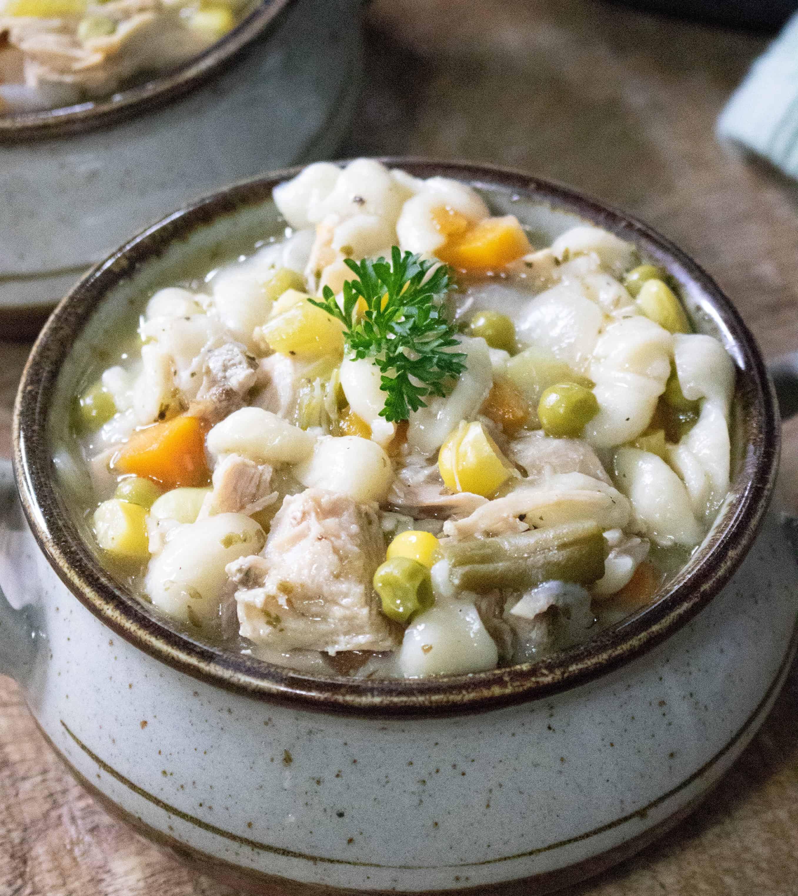 Instant Pot Turkey Vegetable Noodle Soup