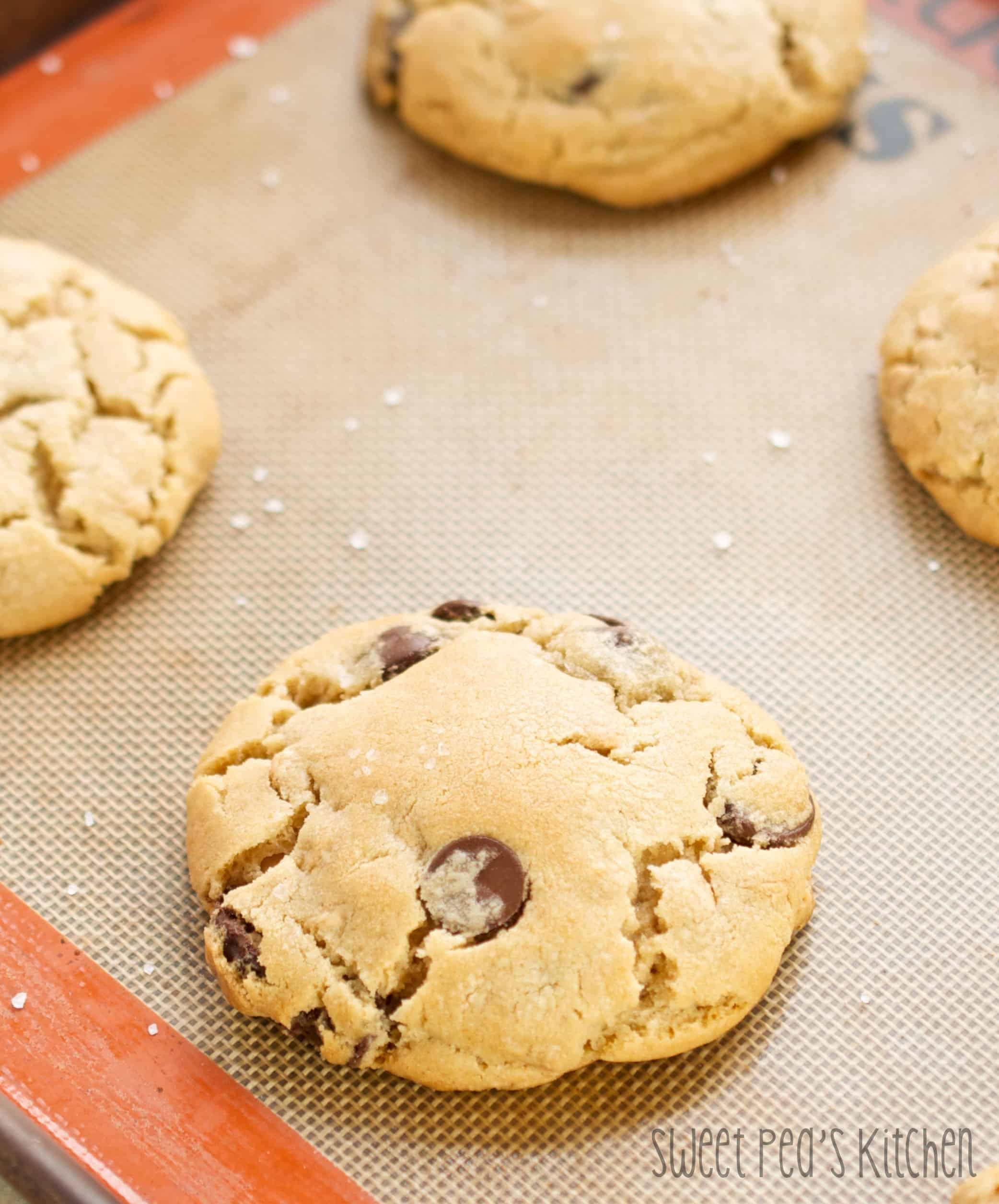 soft and chewy peanut butter chocolate chip cookies on a cookie sheet