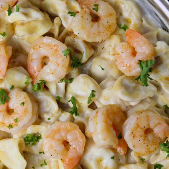 Cheesy Shrimp Tortellini Alfredo Skillet