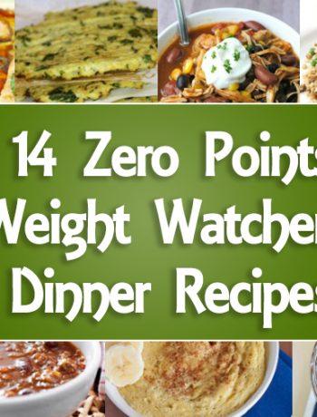 14 Zero Point Weight Watchers Dinner Recipes