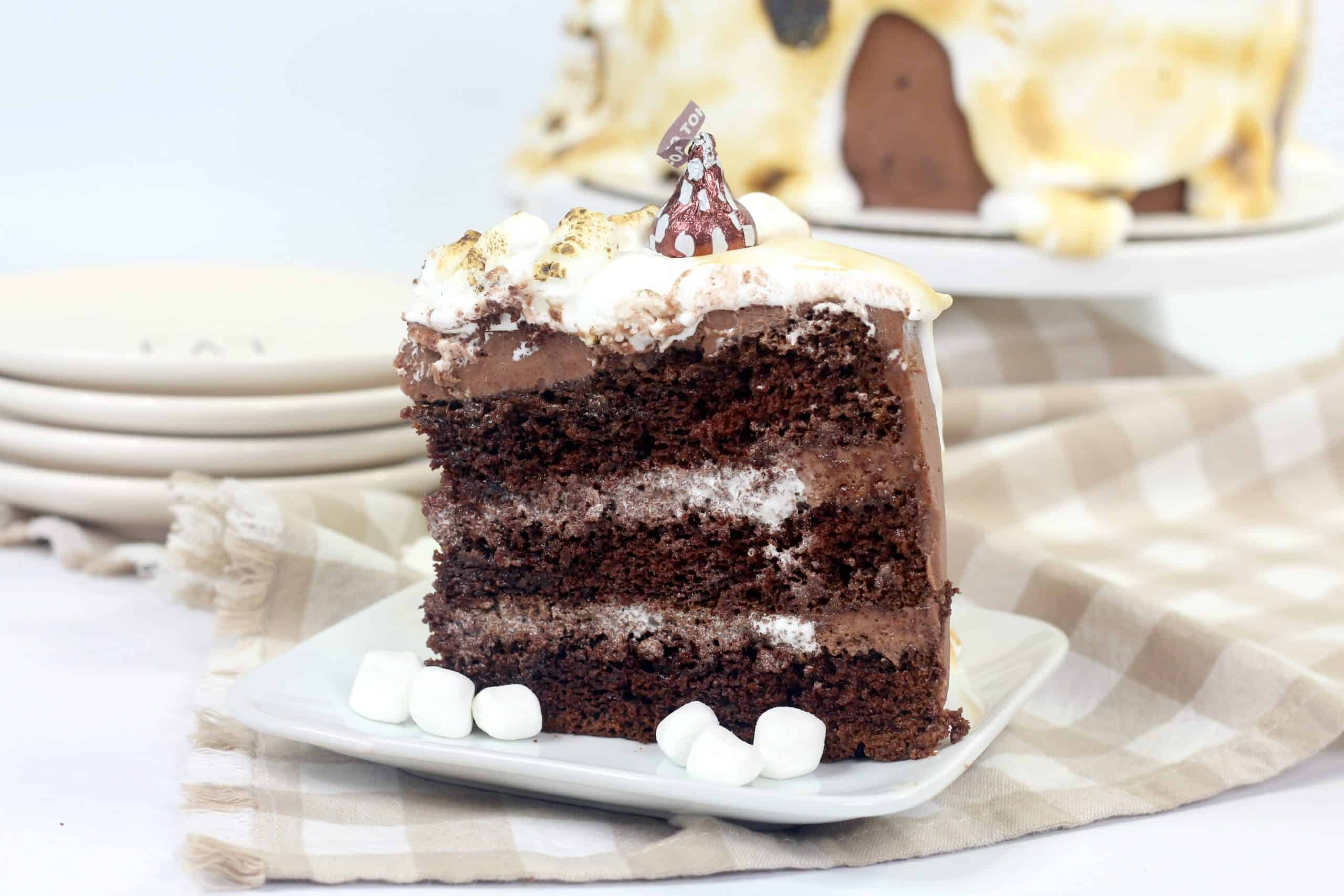 piece of chocolate marshmallow cake