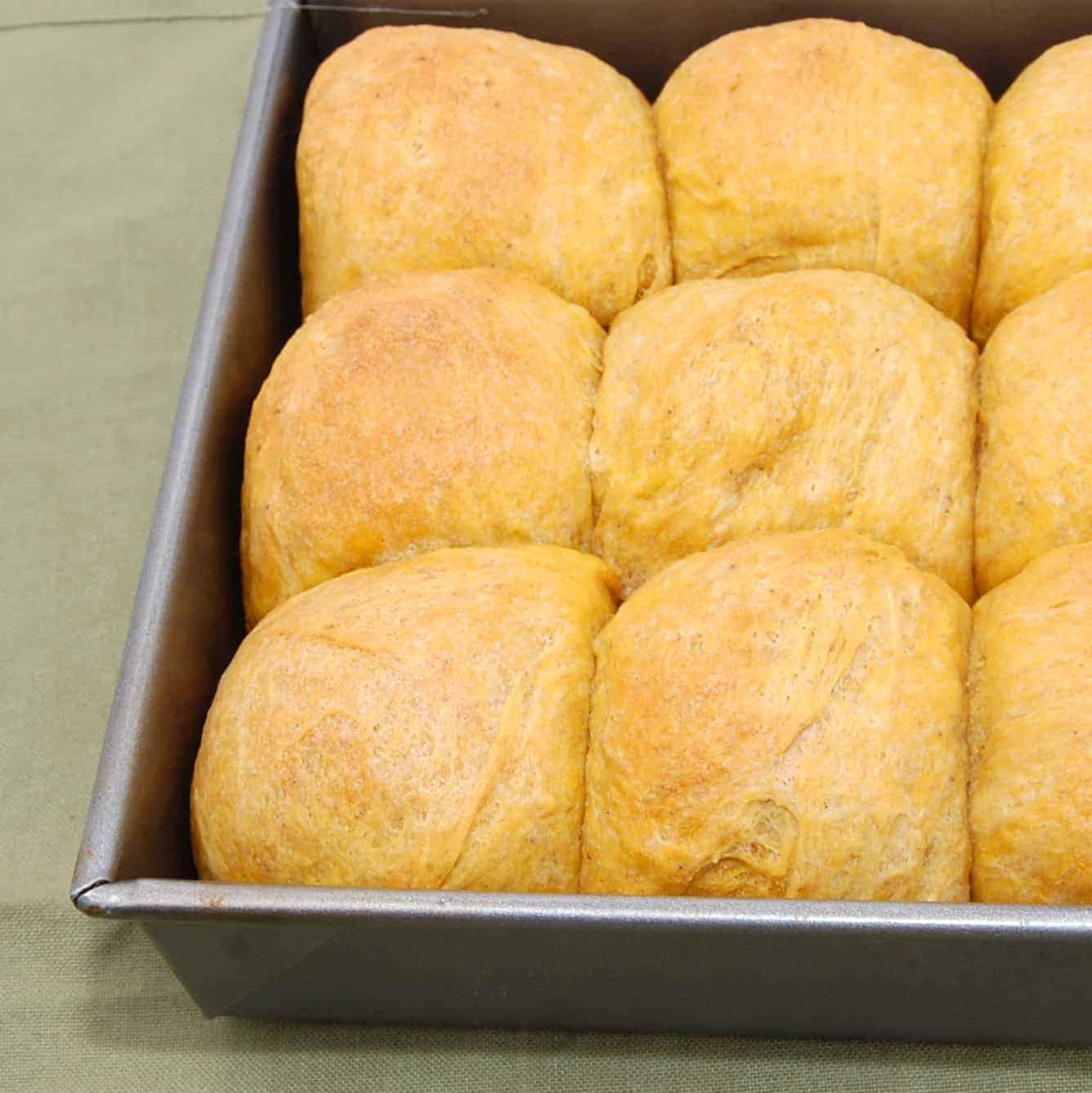 pan with dinner rolls freshly baked