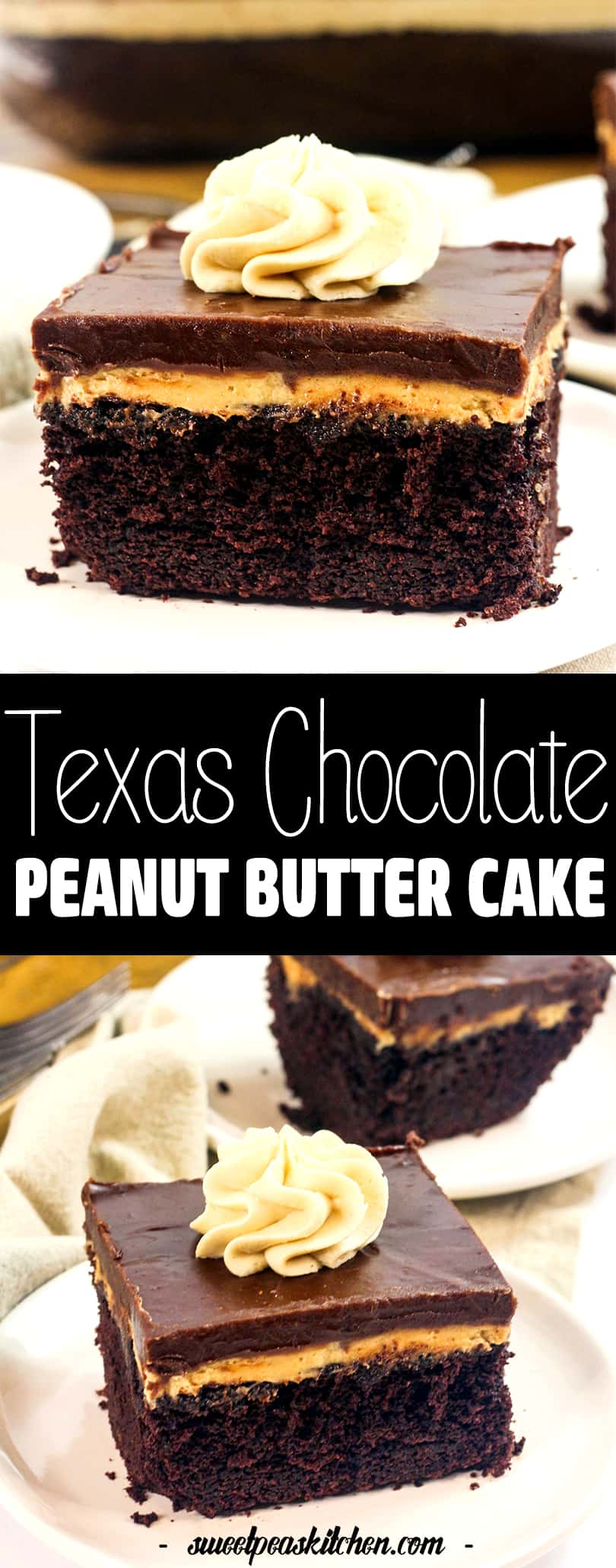 Texas Chocolate Peanut Butter Cake