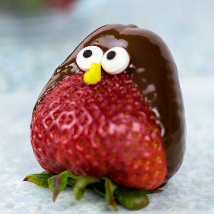 Chocolate Strawberry Birds