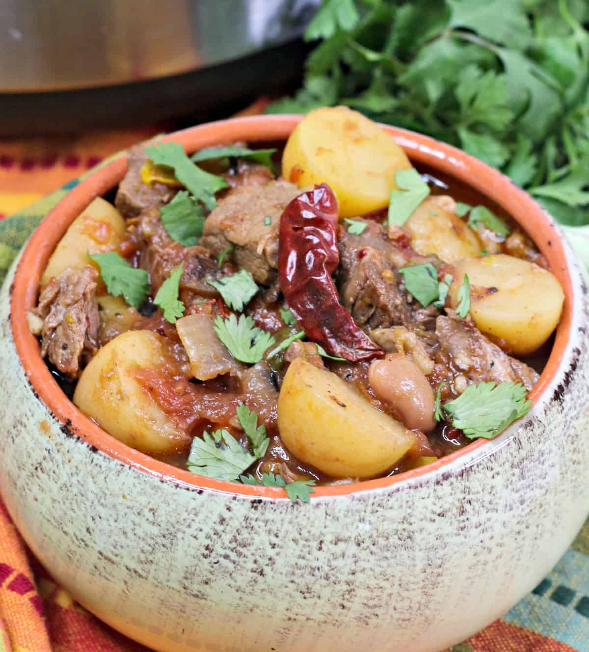 Instant Pot Mexican Beef Stew, Instant Pot Stew meat recipe