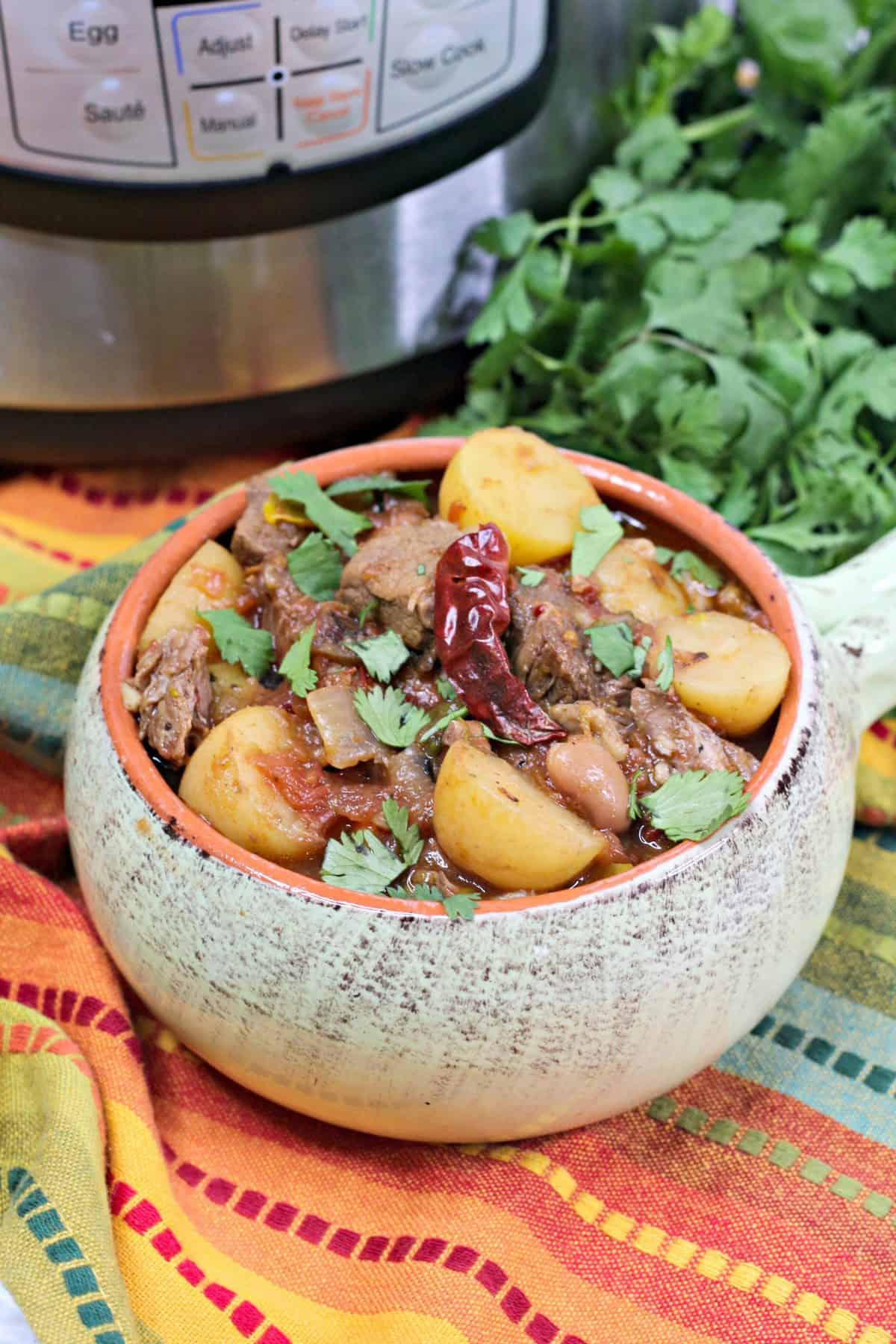 Instant Pot Stew meat recipe , pressure cooker Mexican beef stew