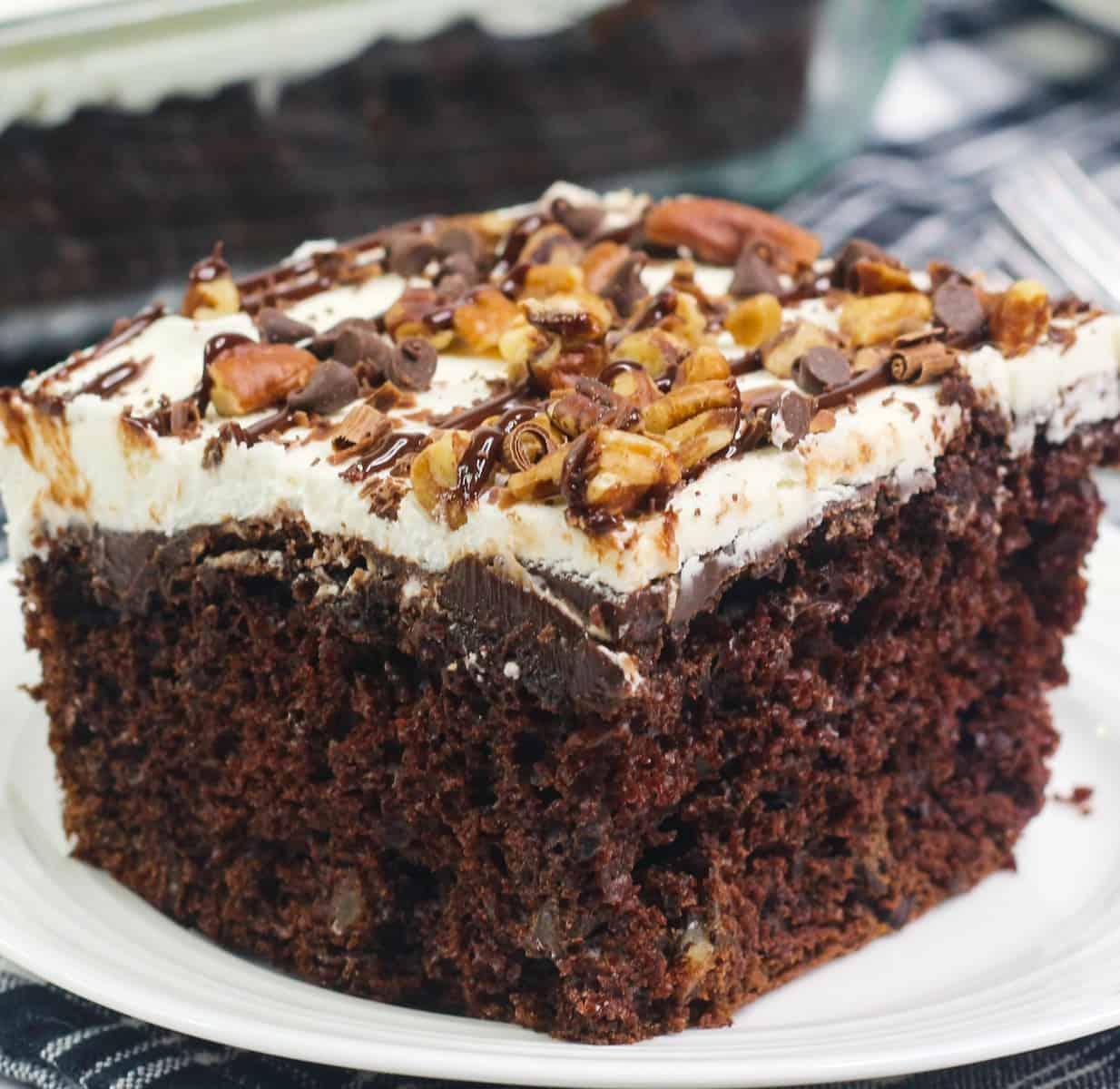 New York Super Fudge Chunk Cake