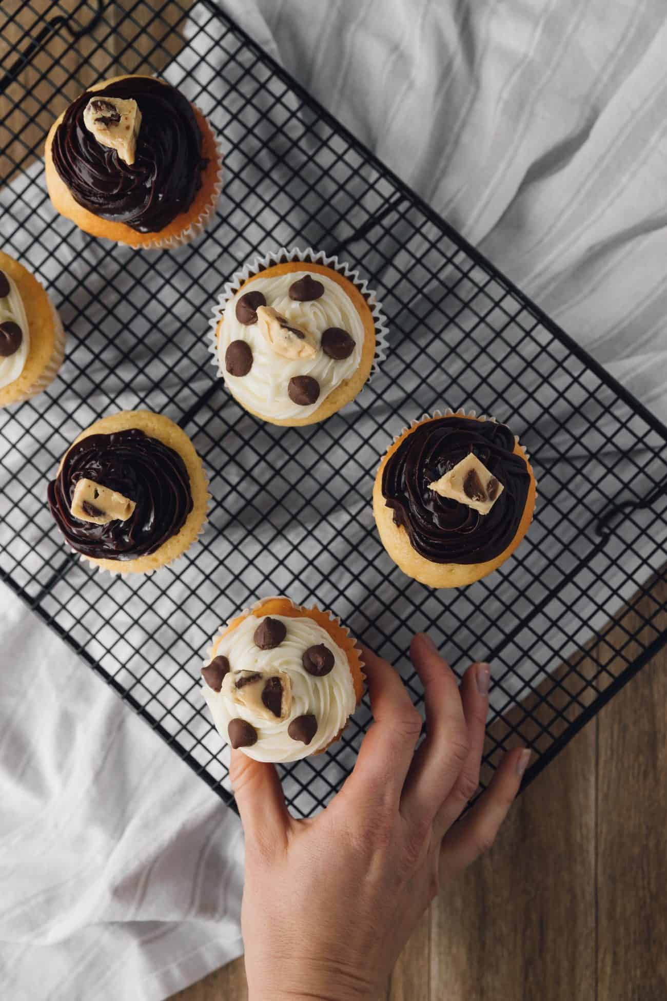 Chocolate Chip Cookie Dough + Cupcake